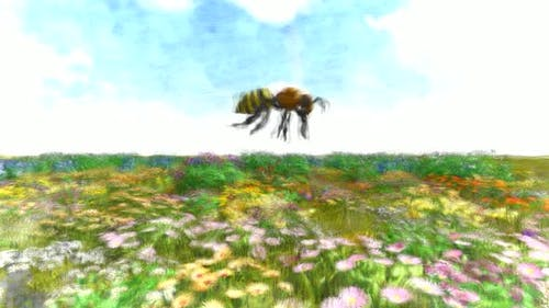 Bee Collecting Pollen Stop Motion
