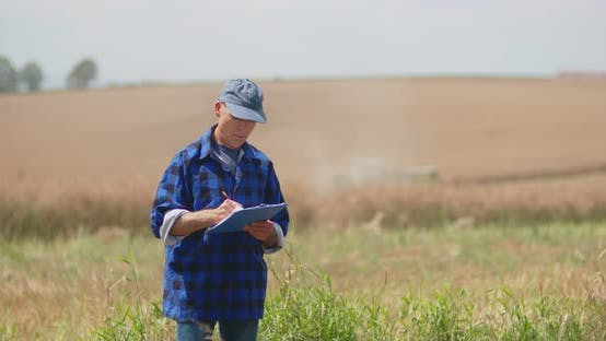 Thumbnail for Agriculture, Male Farmer Walking on Track Over Agricultural Field While Using Digital Tablet
