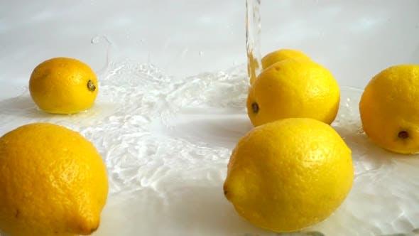 Thumbnail for Washing of Lemons 5