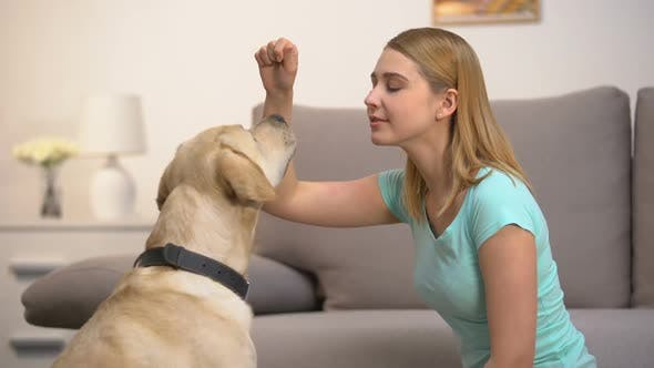 Happy Woman Training Dog and Giving Food