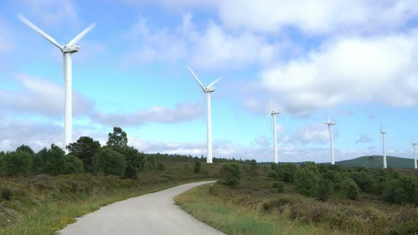 Cover Image for Wind Power. Renewable Energy Way