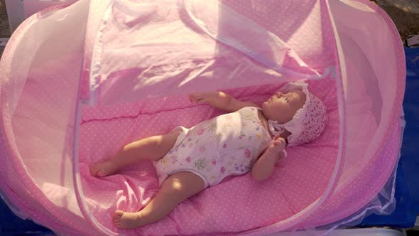 Thumbnail for Baby in Pink Bassinet at the Beach