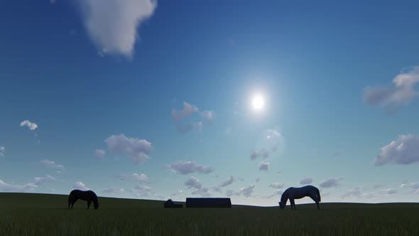 Thumbnail for Horse and Farm
