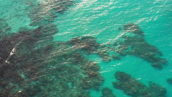 Thumbnail for High Aerial View Of Ocean Water With Coral In Jamaica