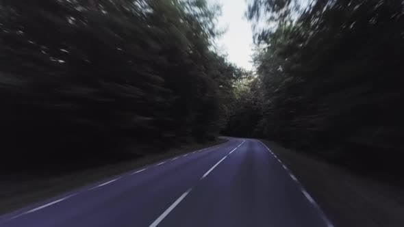 POV Driving On Forest Road