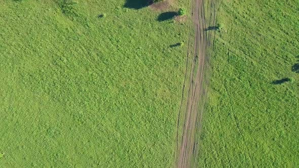 Aerial: Flying Over Solar Fields. Also Visible: Forest, Tourists on Horseback. View: Vertically Down