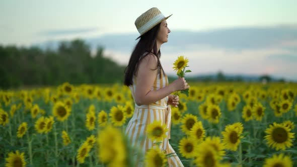 Thumbnail for Young Woman in Dress Strolling Through Field with Sunflowers at Sunset