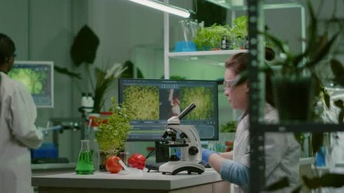 Biochemistry Doctor Examining Chemical Test Using Microscope