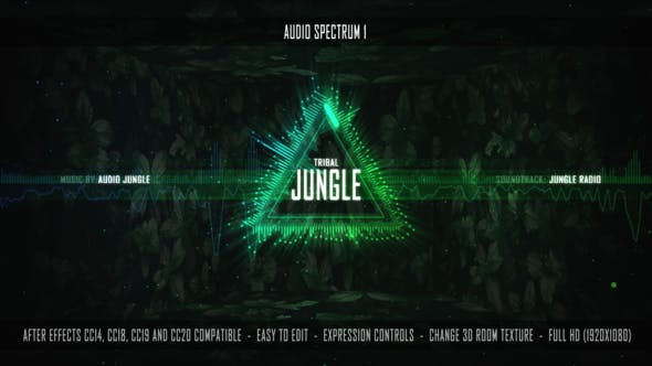 Audio Spectrum 1