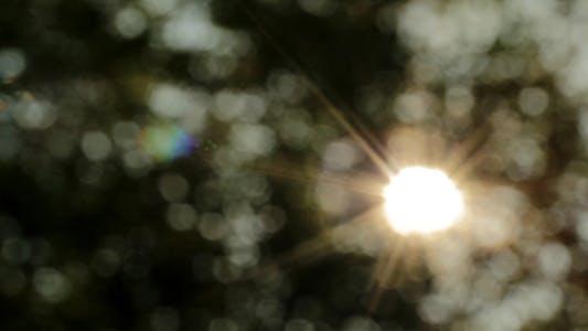 Thumbnail for Sunshine Bokeh Slider 1
