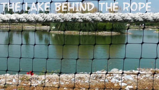The Lake Behind The Rope