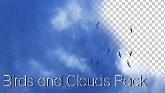 Thumbnail for Birds Pack