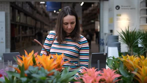 Female Choosing a Potted Flowers in a Store