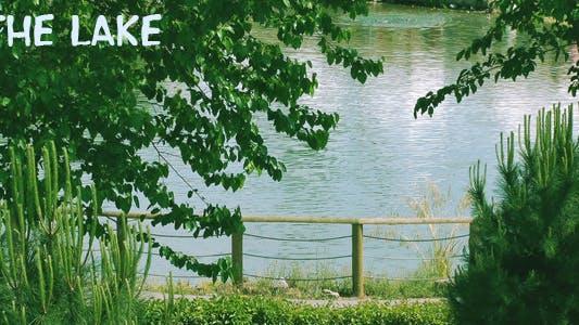 Thumbnail for The Lake