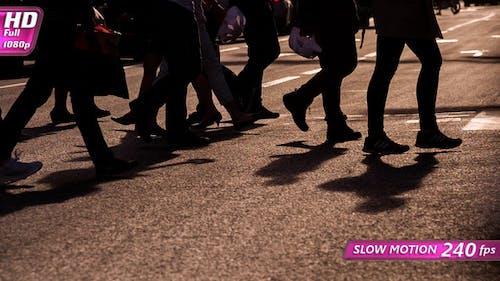Pedestrians In A Crosswalk