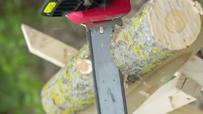 Vertical Shot Chainsaw in Action Cutting Wood