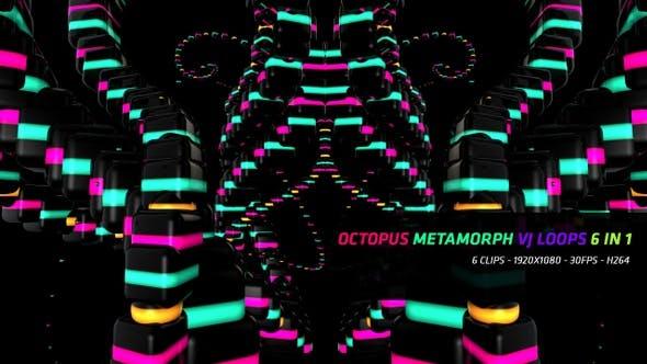 Thumbnail for Octopus Metamorph Vj Loops 6 in 1
