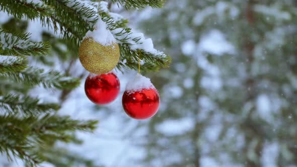 Thumbnail for Christmas Balls on the Tree in the Forest and Snowfall