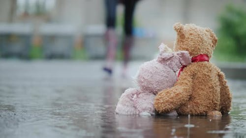 A Man Raises Two Wet Toys From a Puddle