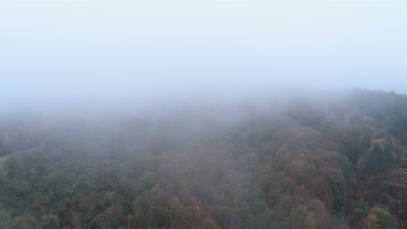 Thumbnail for Aerial Drone View of Mist Going Above Tree Tops in the Fall. Autumn Forest with Fog