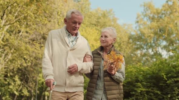Thumbnail for Senior Family Couple Walking in Park