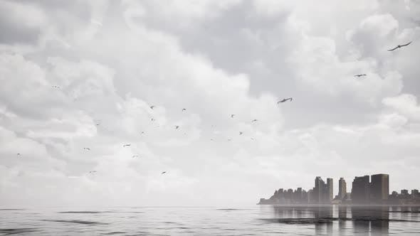 Thumbnail for Sea And Flying Birds
