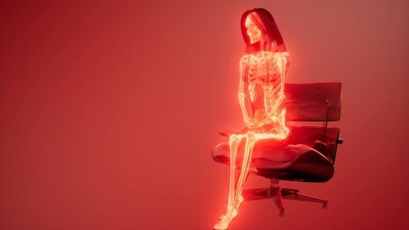Thumbnail for Human Skeleton Radiography Scan