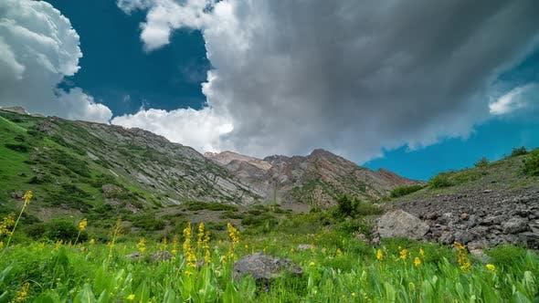Thumbnail for Idyllische Landschaft in den Alpen mit frischen grünen Wiesen und blühenden Blumen und schneebedeckten Bergen