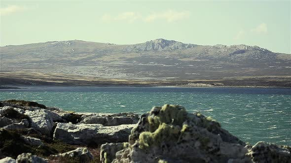 Cover Image for Rocky Beach on the Coast of the Falkland Islands.