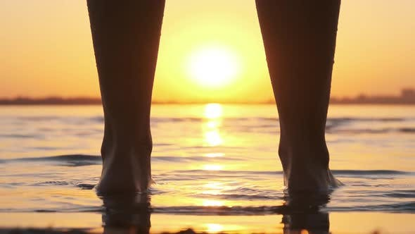 Thumbnail for Silhouette of Woman Legs Standing in Water at Sunset on Beach. Slow Motion