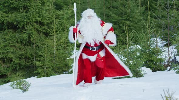 Thumbnail for Santa Claus walking in the forest during winter