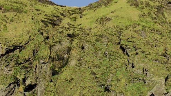Thumbnail for Des milliers d'oiseaux volent autour de falaises accidentées en Islande