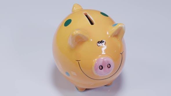 Thumbnail for Piggy Bank Rotation