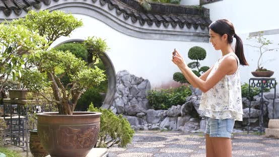 Thumbnail for Woman taking photo with cellphone on bonsai