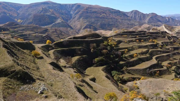 Mountain Terraces in Autumn Under a Clear Sky