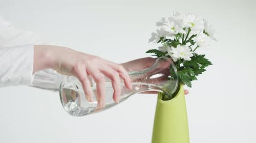 Watering a flower placed in a vase
