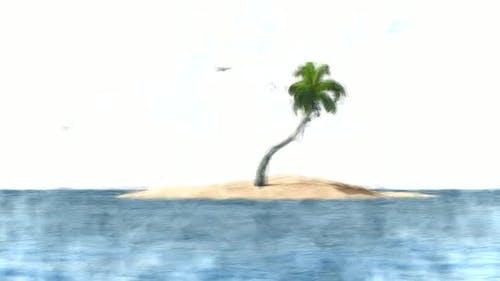 Palm Island Stop Motion