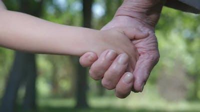 Hold Grandma Hand.