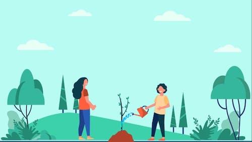 Planting Tree Sampling