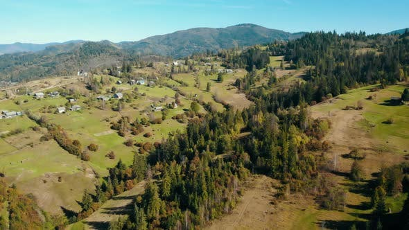 Thumbnail for Aerial View Small Houses Surrounded Pine Forest