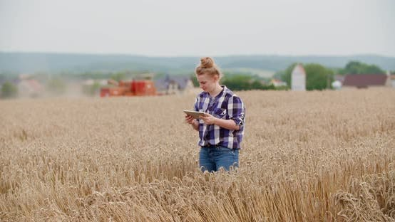 Thumbnail for Portrait of Female Farmer with Digital Tablet at Farm