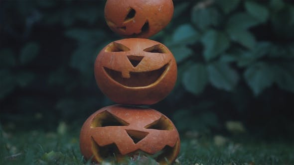 Thumbnail for Hallowen Scene with Three Spooky Pumpkins