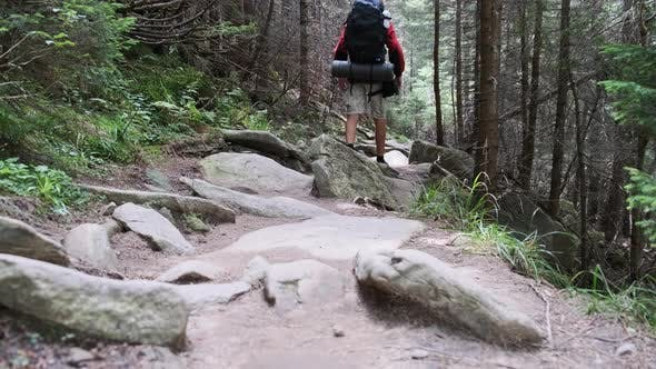 Thumbnail for Tourist with a Backpack Climbing Up Along the Stone Mountain Trail in the Forest