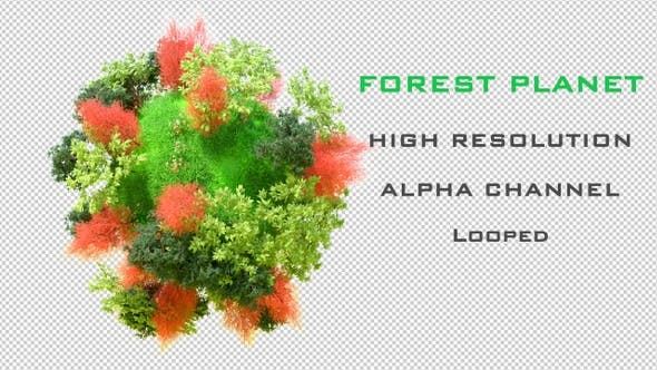 Thumbnail for Forest World 4K