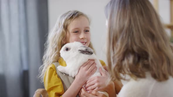 Thumbnail for Cute Girl Holding Bunny