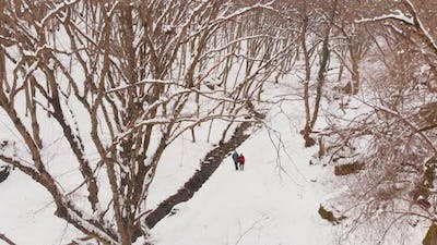 Couple Together Walking In Snowy Forest Together
