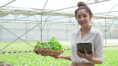 Asian businesswoman farmer with product selling good quality plant and vegetable and holding tablet.