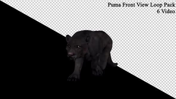 Puma Front View Loop Pack