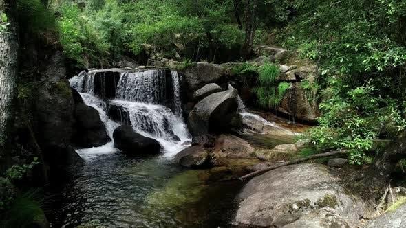 Thumbnail for Dreamy Nature Landscape