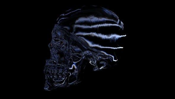 Thumbnail for Crystal Skull Scanning